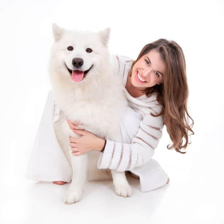 חיסונים לכלב